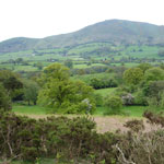 shropshire hills in may